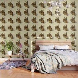 Albrecht Durer  -  Hare Wallpaper