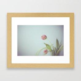 Tulips life Framed Art Print