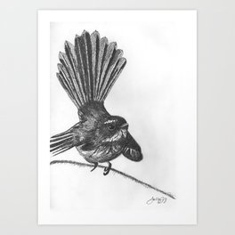 New Zealand fat fuzzy fantail Art Print