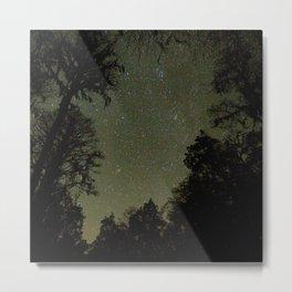 Watercolor Nightscape, Okefenokee Swamp 01, Florida Metal Print
