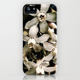 Flowering Currant, White icicle iPhone Case