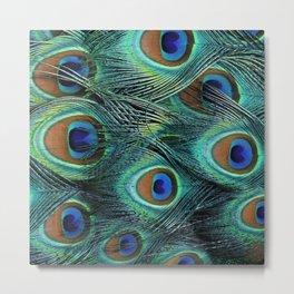 Peacock Feathers 9 Metal Print