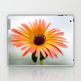 Mesembryanthemum Laptop & iPad Skin