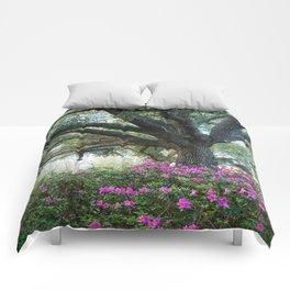 Oaks and Azaleas Comforters