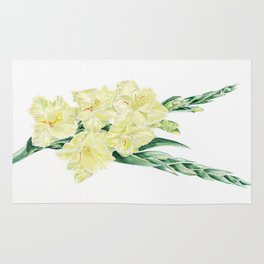 Gladiolus Rug