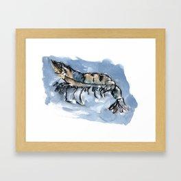 Watery Shrimp Framed Art Print