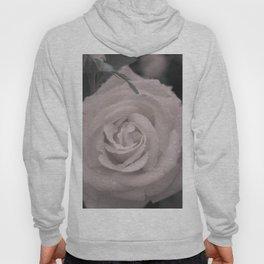 Raining Roses Hoody