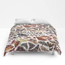 Moths of North America Pattern Comforters