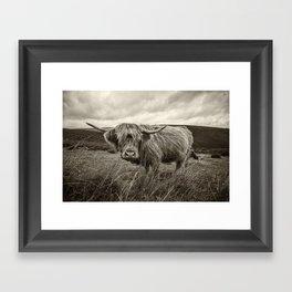 Moo Hair Framed Art Print