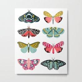 Moths - white background, moth print, moth art, moth sticker, moths, moth art Metal Print