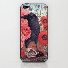 Crow Effigy iPhone & iPod Skin