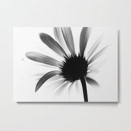 Blume SW Flower BW цветок Metal Print