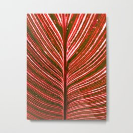 Feather Leaf in Red Metal Print