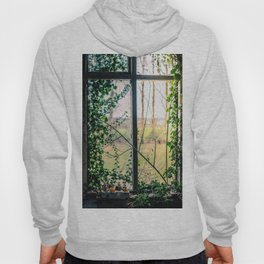 Green Window Hoody