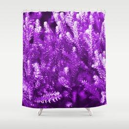 #25 Shower Curtain