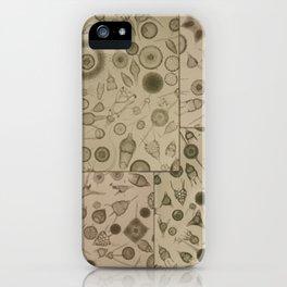 Diatom Design iPhone Case