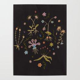 Flora of Planet Hinterland Poster