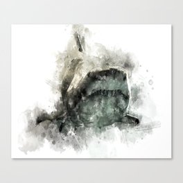 The Grey Smiling Shark Canvas Print