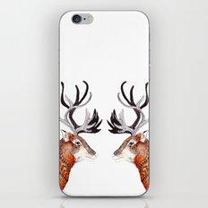 Reindeer  iPhone & iPod Skin