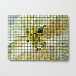 Pale Yellow Poinsettia 1 Mosaic Metal Print