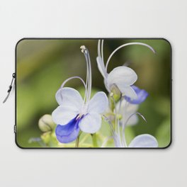 Blue Glory Bower Anthers Laptop Sleeve