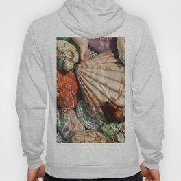 Seashells Hoody