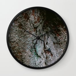 Natural colourful bark from an old Japanese tree | Botanical garden nature photography Wall Clock