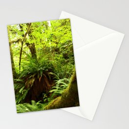 Rainforest Ferns Stationery Cards