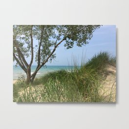 Indiana National Lakeshore Metal Print