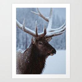 Antlers In Snow Art Print