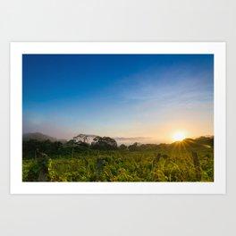 Sunrise over the fields Art Print