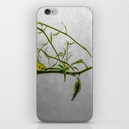 Magic Vine iPhone Skin