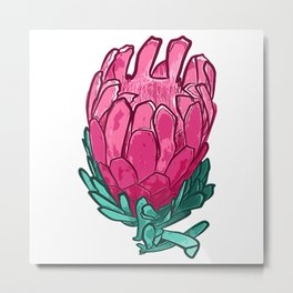 Beautiful Pink Protea Illustration Metal Print