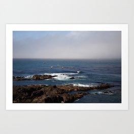 Tide Pools Art Print