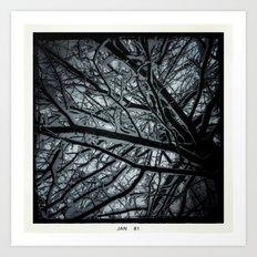 Snowy Limbs Art Print