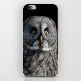 GREY OWL iPhone Skin