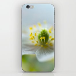 ANEMONE iPhone Skin