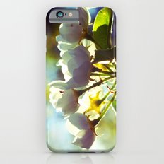 tender cretures Slim Case iPhone 6s