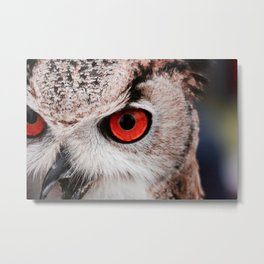 Wise eyes !! Metal Print