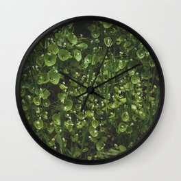 hedge Wall Clock