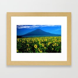 Sunflower fields at Mount Fuji, Japan  - Jéanpaul Ferro Framed Art Print