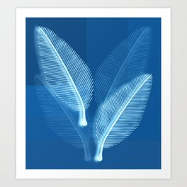 Blueprint Leaves Art Print