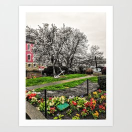 Victoria BC Flower Garden Photograph Color/B&W Mashup Art Print