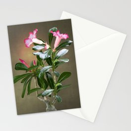 Spade's Desert Rose Stationery Cards