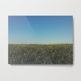 Alpine Fields Metal Print