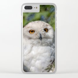 Owl_20180207_by_JAMFoto Clear iPhone Case