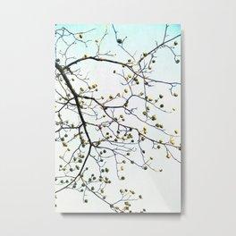 Branched Metal Print