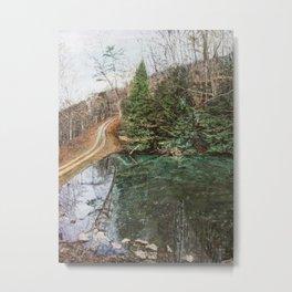 Appalachia Pond Metal Print