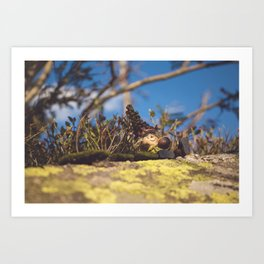 Wood Elf II Art Print