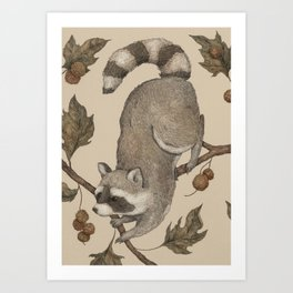 The Raccoon and Sycamore Art Print
